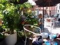 Vores hyggelige gårdhave